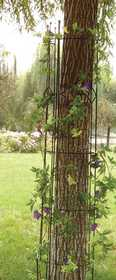 Panacea 89657 Semi-Round Arts & Crafts Trellis Black 72 in x10 in