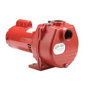 Red Lion RLSP-150 1.5-Hp Cast Iron Sprinkler Pump