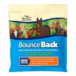 Manna Pro MPC 0094130249 4-Ounce Bounce Back Electrolyte Supplement