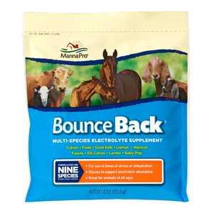 Manna Pro 0094130249 Bounce Back 4 oz