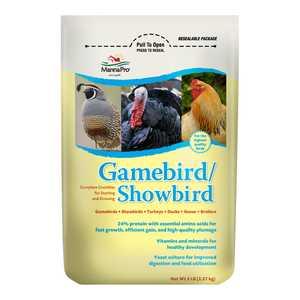 Manna Pro 00-4620-3236 Gamebird/Showbird Poultry Food 5-Lb