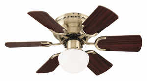 Westinghouse Lighting 78603 Single-Light 30-Inch Indoor Ceiling Fan
