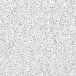 Armstrong 255 Chaperone 12x12 Ceiling Tile Per Piece