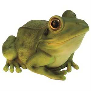 BFG Supply, LLC MCD508002BG Michael Carr Designs Medium Green Frog Statue