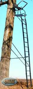 Big Game Tree Stands Cr4106-S The Legend Ladderstand