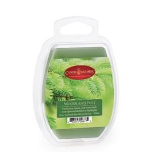 Candle Warmers Etc. 7980S 2.5-Ounce Woodland Blackberry Wax Melt