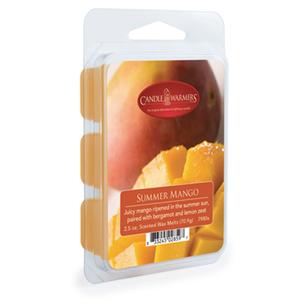 Candle Warmers Etc. 7980S 2.5-Ounce Summer Mango Wax Melt