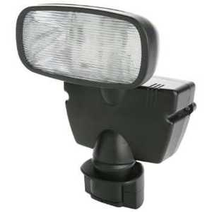 Designers Edge L-951 Solar Power Flood Light