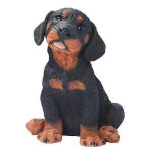 Design Toscano CF325 Rotweiler Puppy Dog Statue