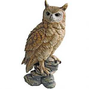 Design Toscano QM2334000 Perching Forest Owl Statue