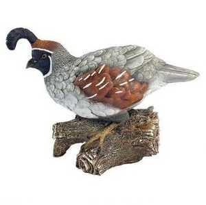 Design Toscano QM2385600 Coco The Quail Bird Statue