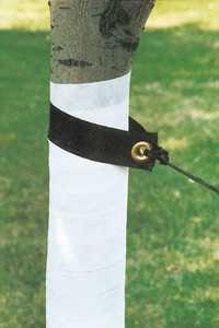 DeWitt TSL-BX Tree Strap Sling 20 In