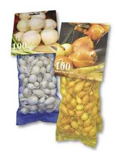 Disselkoen & Mulder Farms RED Red Onion Sets 100ct