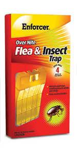 Enforcer ONFT1 Over Nite Flea & Insect Trap