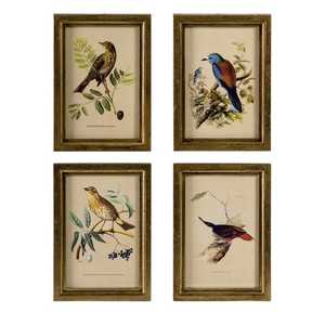 Imax Corp 16125-4 Wooden Bird Plaques