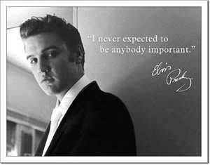 Nostalgic Images PD-1498 Elvis Presley Important Metal Sign
