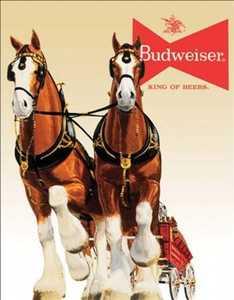 Nostalgic Images BD-1631 Budweiser Clydesdale Team Metal Sign