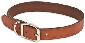 Aspen Pet 10831 1 x 22-Inch Leather Dog Collar