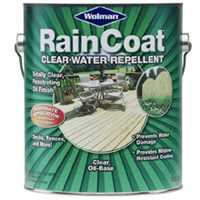 Zinsser 0539551 Raincoat Oil/Base Clear Gl