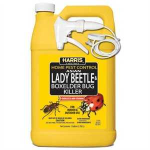 Harris 4785796 Beetle & Bx Elder Bug Kil Gal