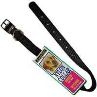 Aspen Pet 6168348 12x5/8 Nylon Black Collar