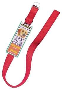 Aspen Pet 21406 1 x 26-Inch Red 2-Ply Nylon Dog Collar