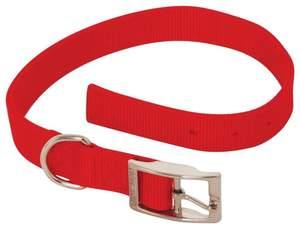 Aspen Pet 21326 1 x 22-Inch Red 2-Ply Nylon Dog Collar
