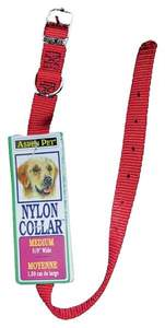 Aspen Pet 15506 5/8 x 18-Inch Red Nylon Dog Collar