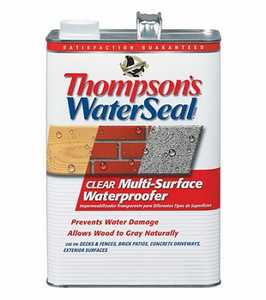Thompsons 24111 WaterSeal Clear Multi-Surface Waterproofer 1.2-Gallon