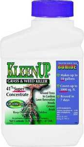 Bonide Products 7460 Kleenup Conc. 41% Glyphosate