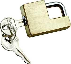 Reese Towpower 7005300 Brass Coupler Lock