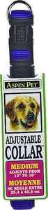 Aspen Pet 15708 5/8 x 14-Inch Blue Nylon Dog Collar