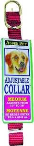 Aspen Pet 15706 5/8 x 14-Inch Red Nylon Dog Collar