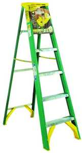 Werner Co 5906 6 ft Type II Fiberglass Step Ladder