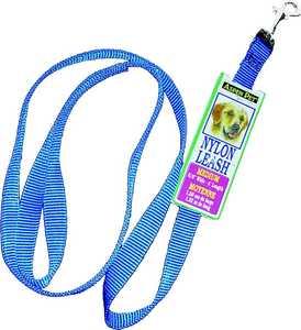 Aspen Pet 1516178 4 ft X5/8 Nylon Blue Leash