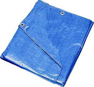 MintCraft T2030BB90 20x30 Medium Duty Blue Tarp