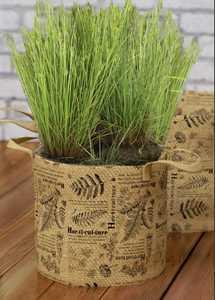 Panacea 84346 10 Gal Botanical Print Grow Bag