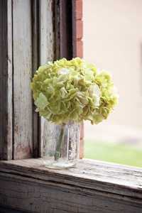 Park Hill Collections TR2215LG 12-Inch Light Green Hydrangea Bundle