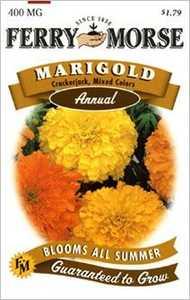 Ferry-Morse Seed Company 1079 Marigold Crackerjack Seeds