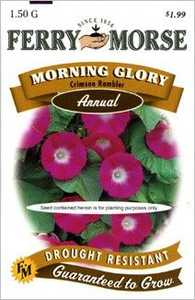 Ferry-Morse Seed Company 1092 Morning Glory Crimson Seeds