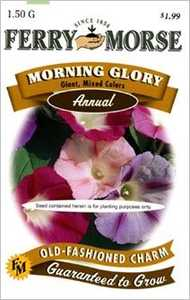 Ferry-Morse Seed Company 1094 Morning Glory Giant Seeds