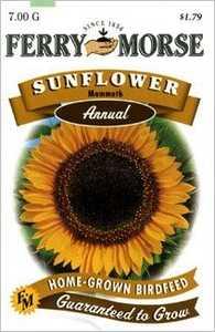 Ferry-Morse Seed Company 1157 Sunflower Mammoth Seeds