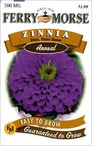 Ferry-Morse Seed Company 1177 Zinnia G D Violet Seeds