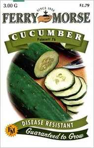 Ferry-Morse Seed Company 1278 Cucumber Poinsett 76 Seeds