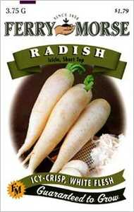 Ferry-Morse Seed Company 1352 Radish Icicle Short Top Seeds