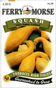 Ferry-Morse Seed Company 1377 Squash Yellow Summer Seeds