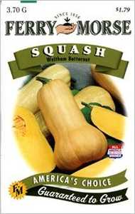 Ferry-Morse Seed Company 1384 Squash Waltham Butternut Seeds