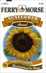 Ferry-Morse Seed Company 1950 Sunflower Amer Gt Seeds