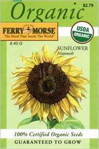Ferry-Morse Seed Company 3001 Sunflower Mammoth Seeds