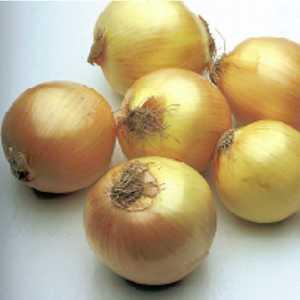 Plantation Products 41696 Walla Walla Onion